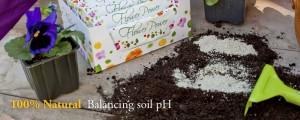 header-balancing-soil